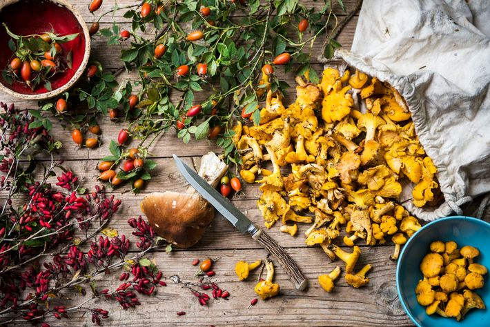 The mountain pastures surrounding Valais offer up an abundant supply of sustainable and seasonal ingredients that ...