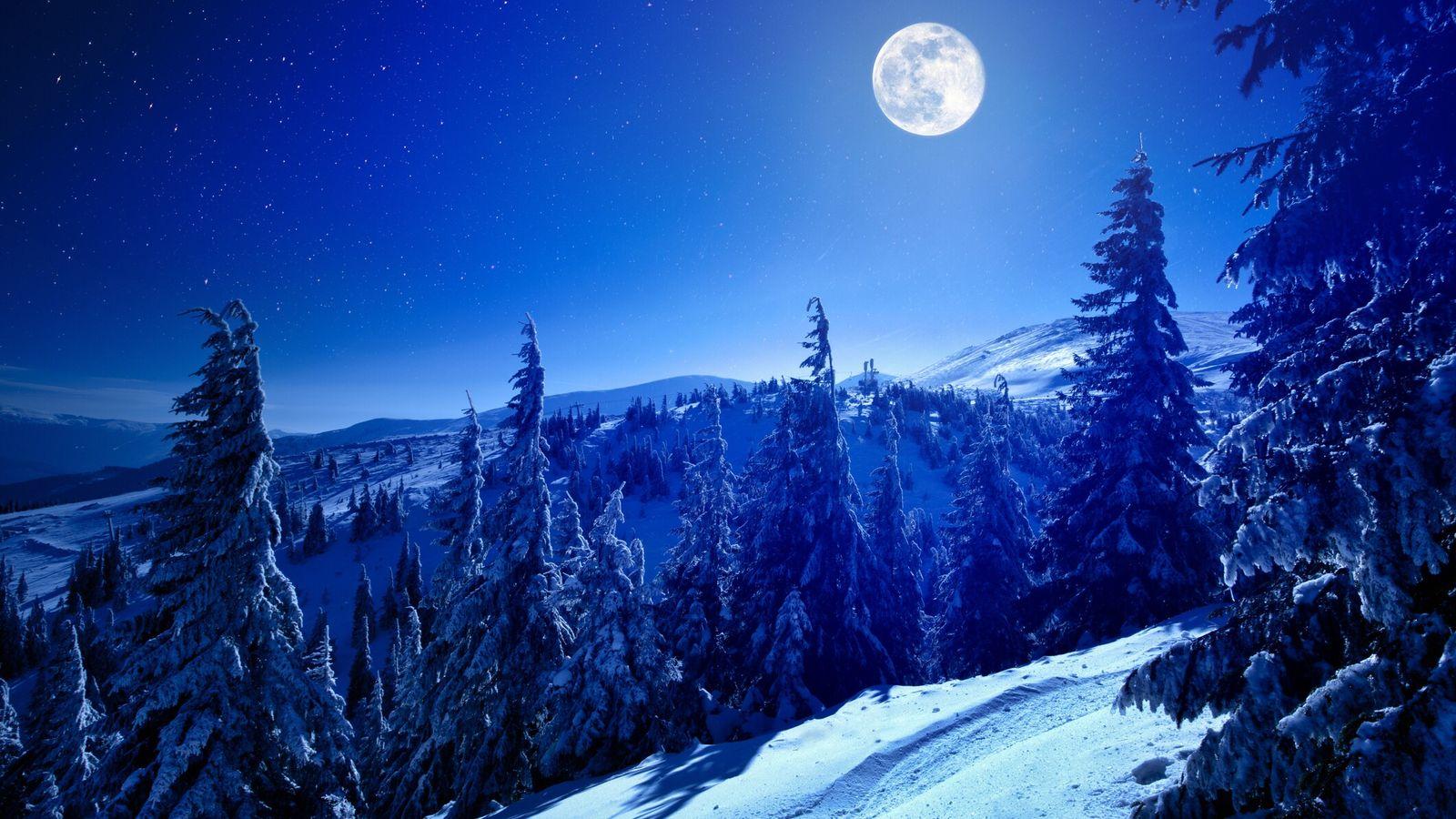 Snowy view in Carpathian Mountains, winter landscape.