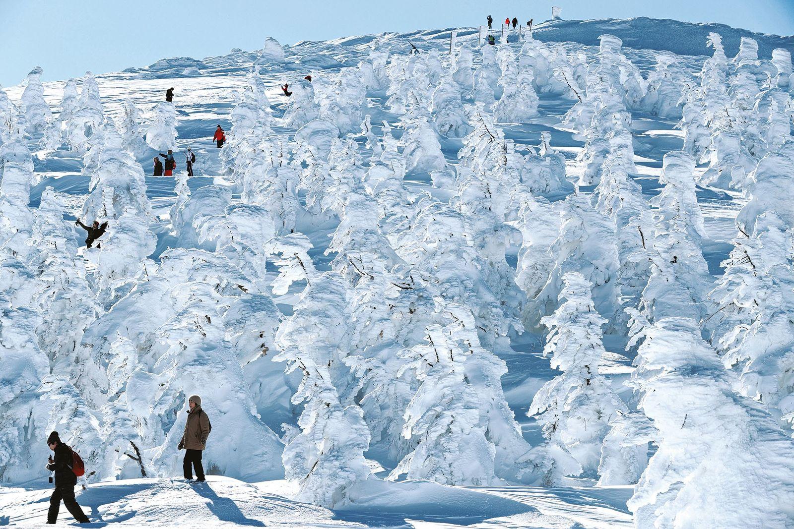 Tokohu's Zao ski resort