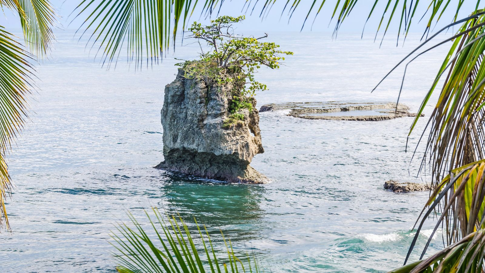 Less explored than the Pacific coast, Costa Rica's Caribbean shoreline is carved with secluded coves and ...