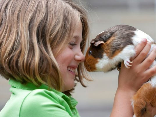 Is your family pet bad for the environment? It depends.