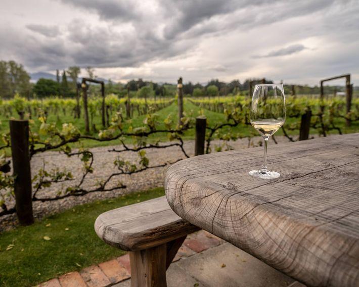 A glass of chardonnay awaits in the garden of Neudorf Vineyards, a winery near Nelson.