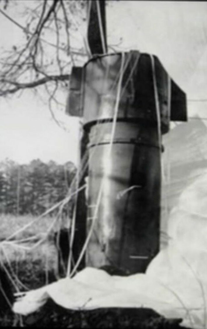 Slowed by its parachute, one of the bombs came to rest in a stand of trees. ...