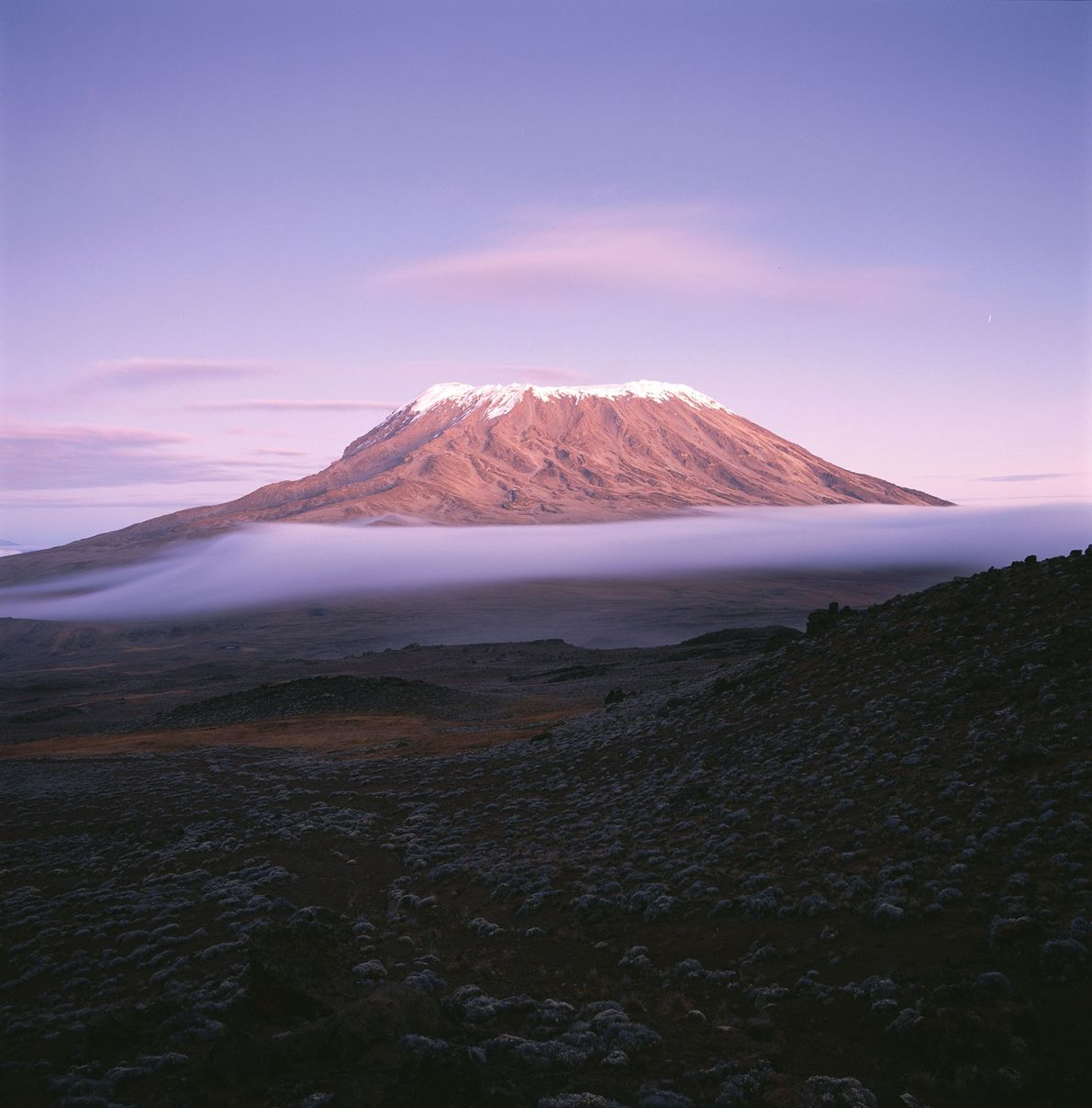 Mount Kilimanjaro contains three volcanic cones—Kibo, Mawenzi, and Shira—and is the highest mountain in Africa.