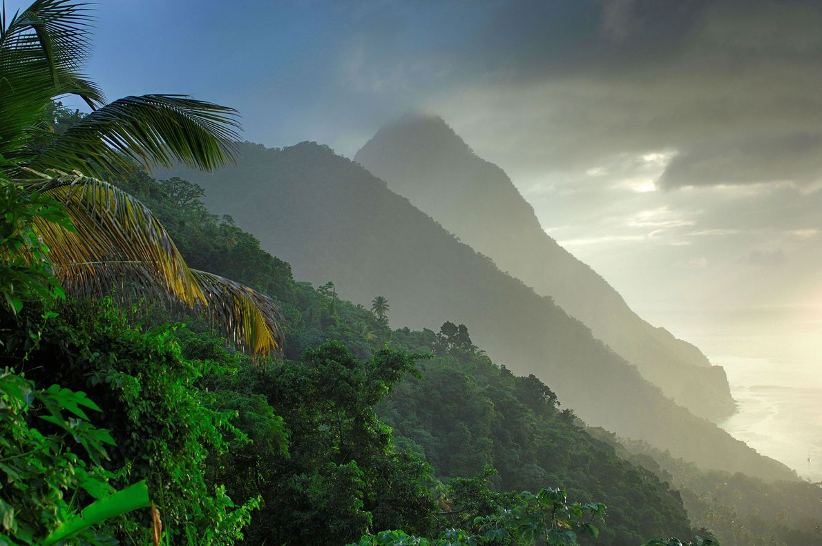 A UNESCO World Heritage site, the Pitons hold the water source for the hot springs of ...