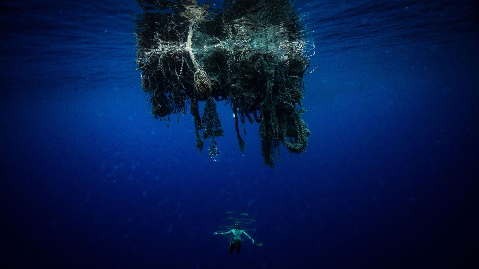 A member of Lecomte's team swims beneath a 'ghost net,' a fishing net either lost or ...