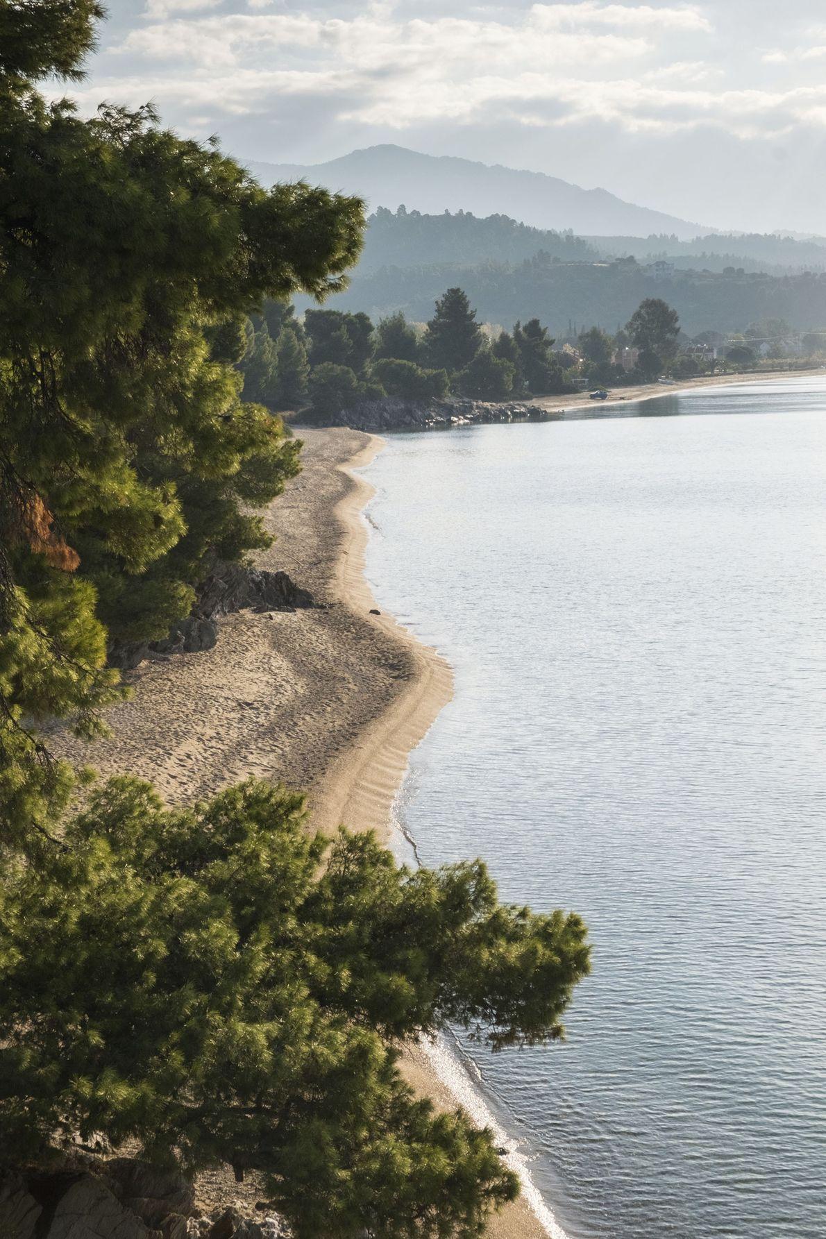 Coast between Nikitis and Neos Marmaras