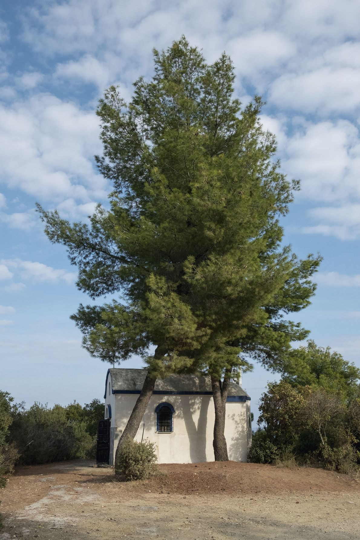 A chapel in the shade of trees