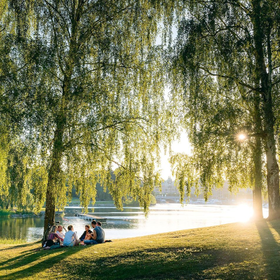 Fifty shades of green: reflecting on a decade of environmentally-driven innovation in Stockholm
