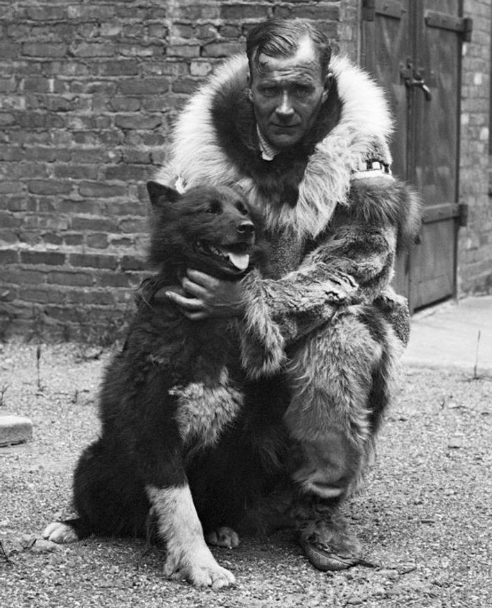 Gunnar Kaasen with Balto, the lead dog for the final 50-mile transit of the diphtheria antitoxin ...