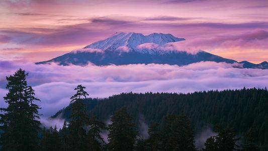 Mount St. Helens isn't where it should be. Scientists may finally know why.