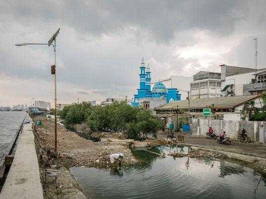 Sinking land and rising seas: the dual crises facing coastal communities