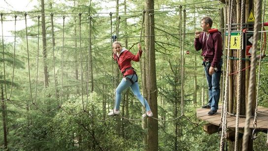 Zip-wire, Go Ape Alice Holt Forest, Hampshire, UK.