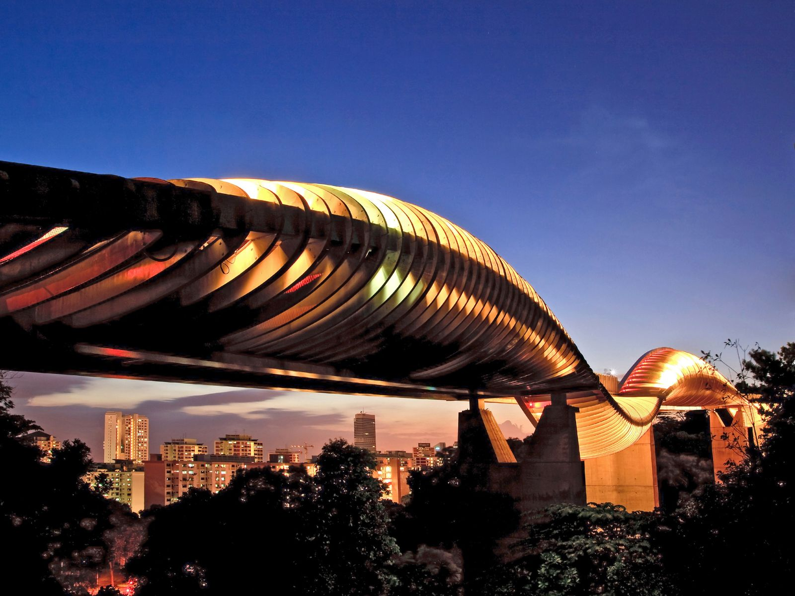 Steel and local Balau wood curve together to form the spectacular Henderson Waves, the highest pedestrian ...