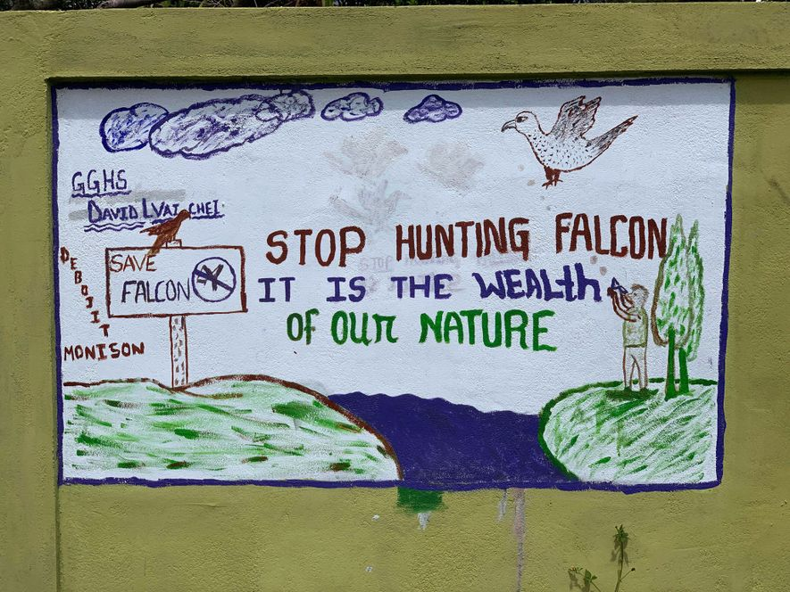 A village sign warns against hunting migratory Amur falcons, which roost in the hills of Manipur, ...