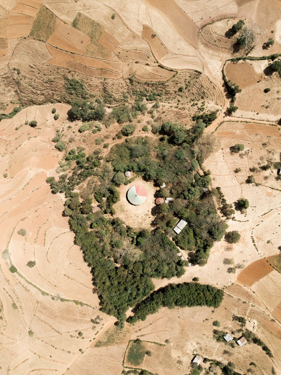 Several auxiliary buildings nestle in the forest alongside the Tebebari Michael church in Anbesame, Amhara.