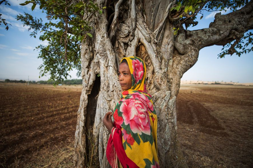 A young boy stands in the ploughed fields near the Bitsawit Mariam church in South Gonder.