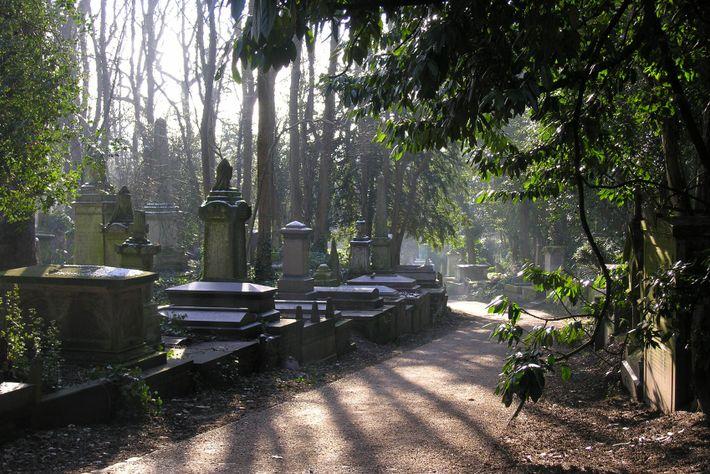 If you search long enough in Highgate Cemetery, you might just be able to spot the ...