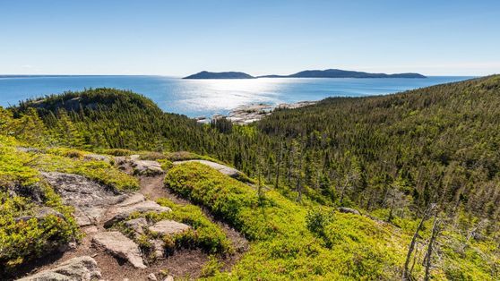 Quebec's best road trip: into the wild on the Whale Route