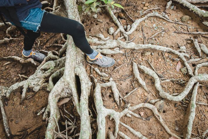 German journalist Jenni Roth hikes in the New Territories' Plover Cove Country Park. Hong Kong, a ...