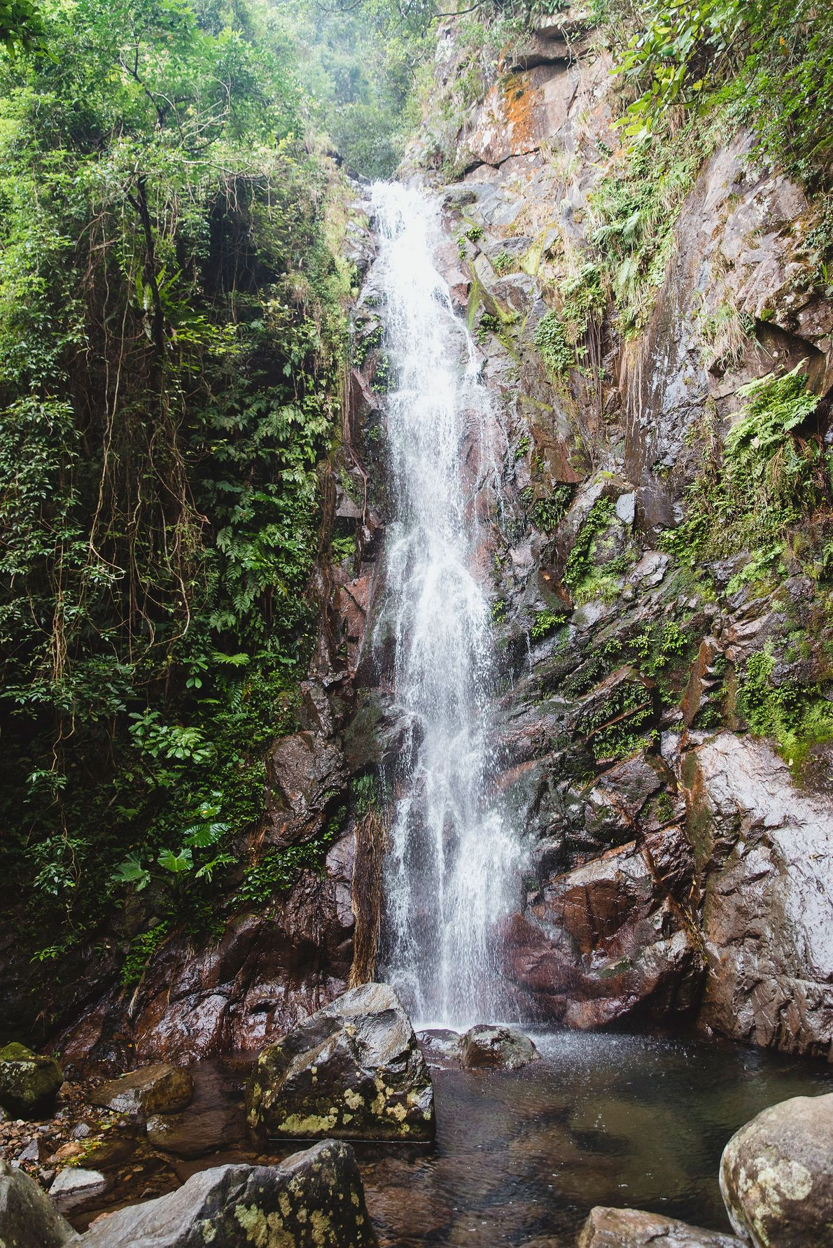 The Ng Tung Chai waterfall lies on a trail through a preserved area. Nearly 40% of ...
