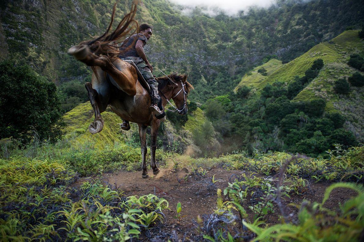 Jérémie rides his horse through Hiva Oa's lush terrain.