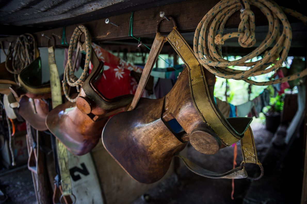 Marquesan horsemen build their own saddles using local wood. They are usually shaped to carry bags ...