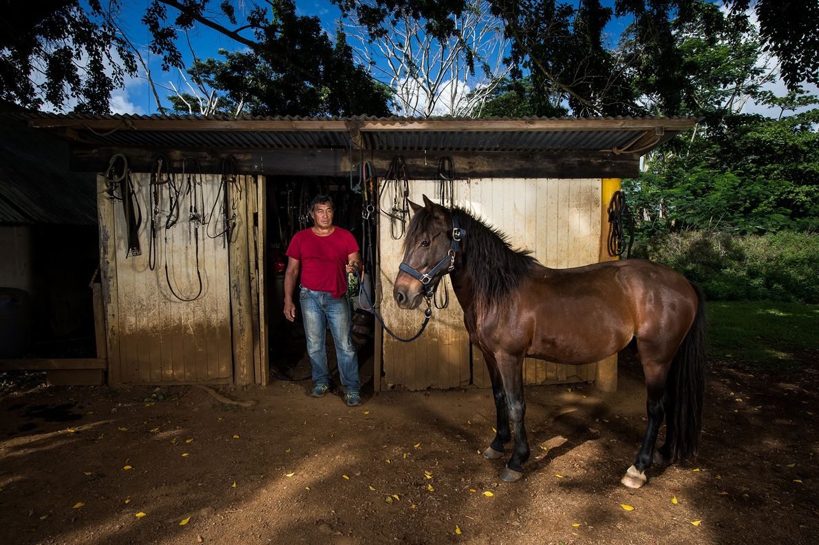 Paco grew up in Ua Huka surrounded by the traditions of the Marquesan horse. He now ...