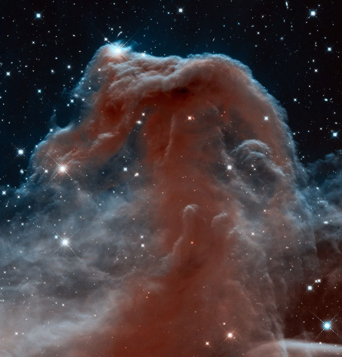 Hubble's Wide Field Camera 3 looks through the Horsehead Nebula in a uniquely detailed infrared image.