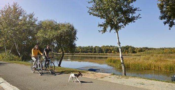 Cycling around Lake Tisza