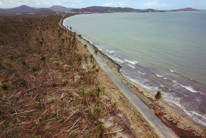 Damage caused by Hurricane Maria in Puerto Rico, shown here in October 2017. Storm surges, and ...