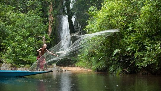 Traditional fishing in Batang Ai National Park.