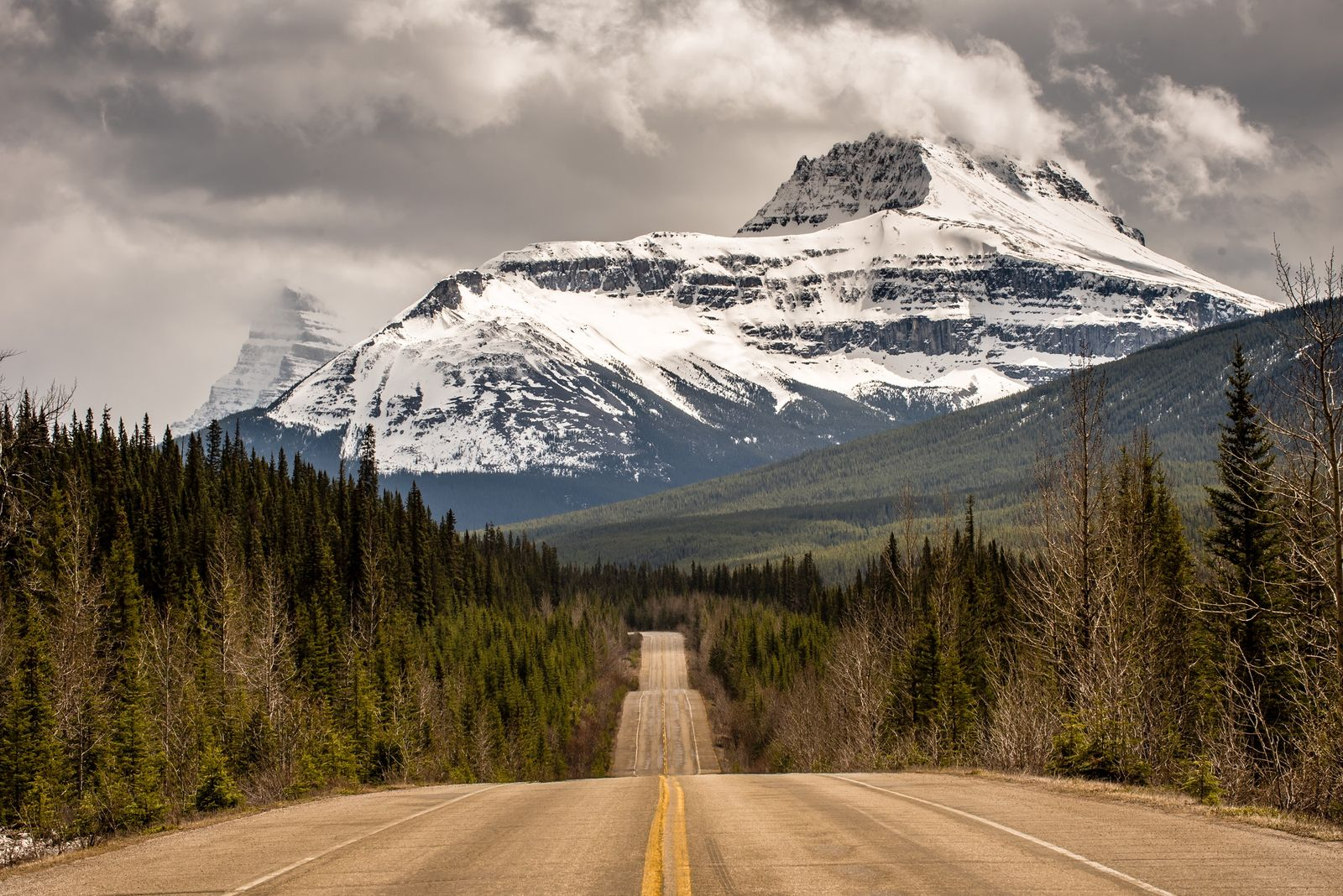 Icefields Parkway leading toward the Canadian Rocky Mountains and Jasper National Park.