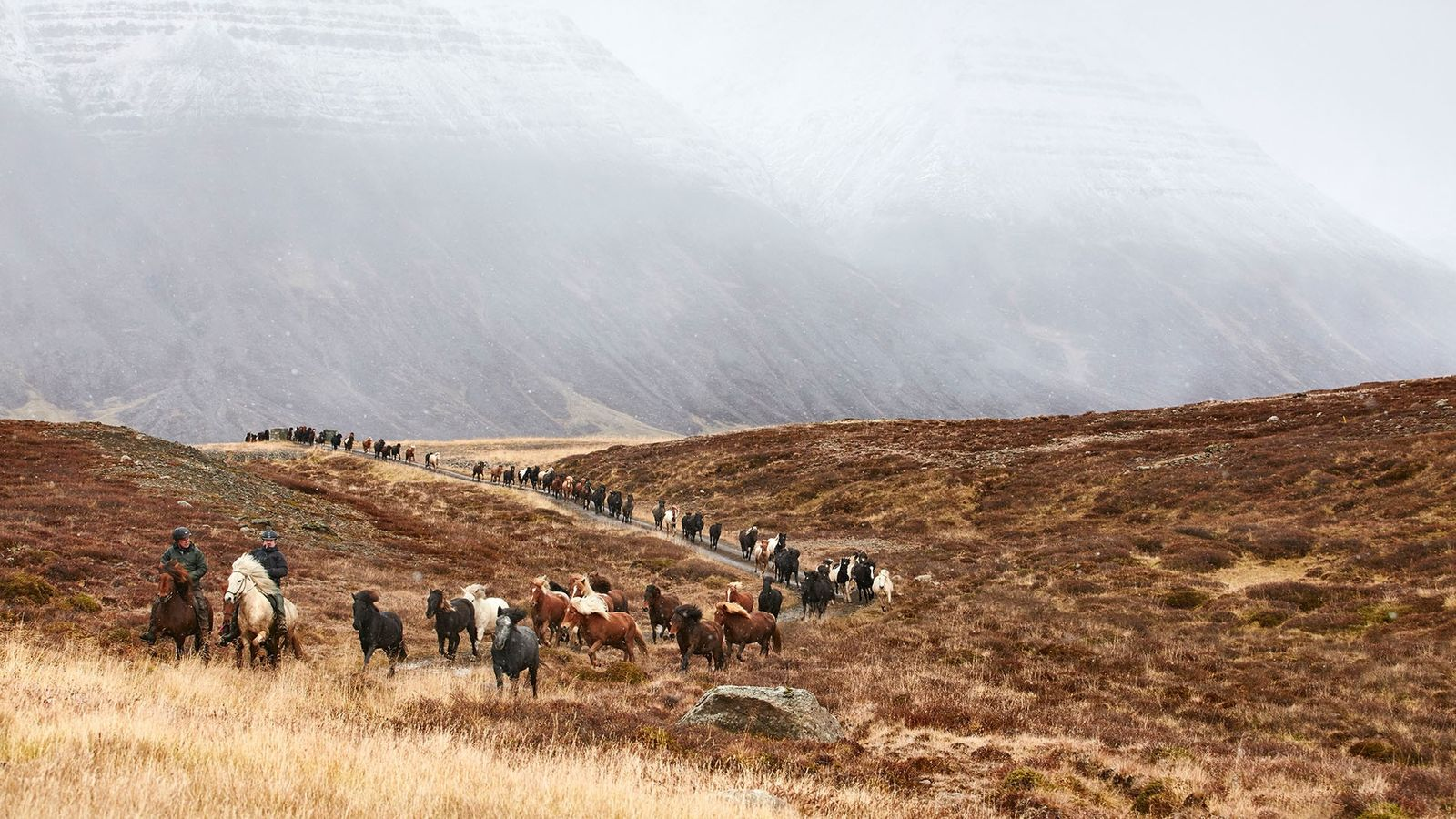 The annual Laufskálarétt horse round up in Iceland's Kolbeinsdalur Valley.