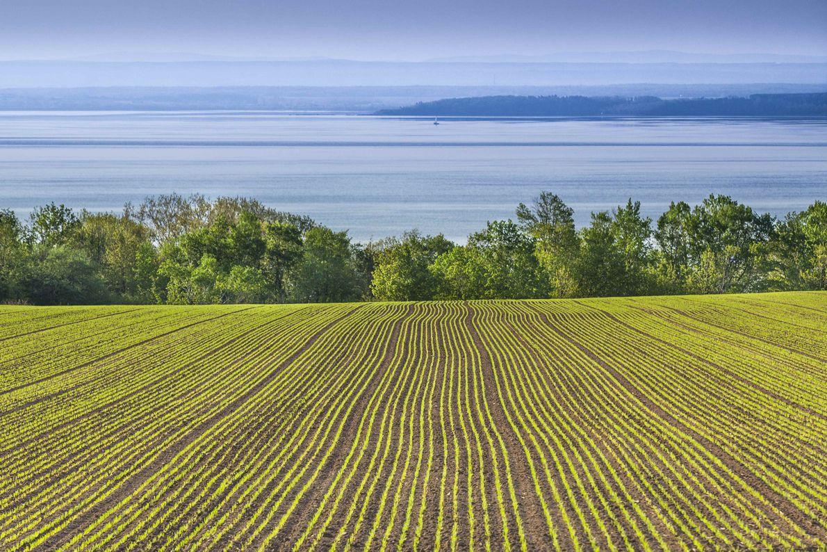 """Landscape view of farmland, Île d""""Orléans."""