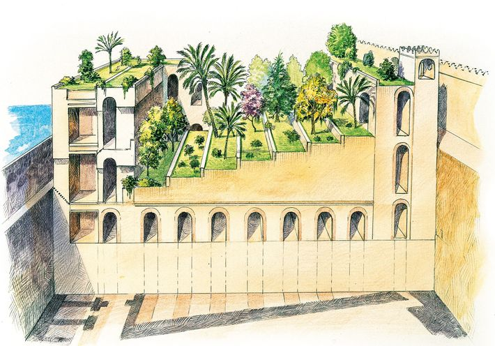 Ancient accounts described the Babylon's gardens as having terraces, each one filled with lush and fragrant ...