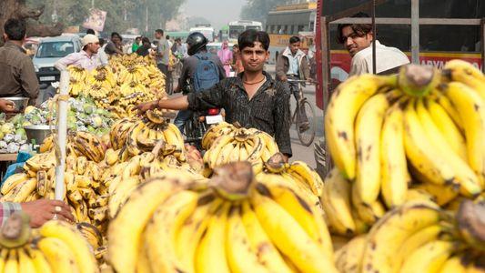 Delhi: A Gurgaon homestay