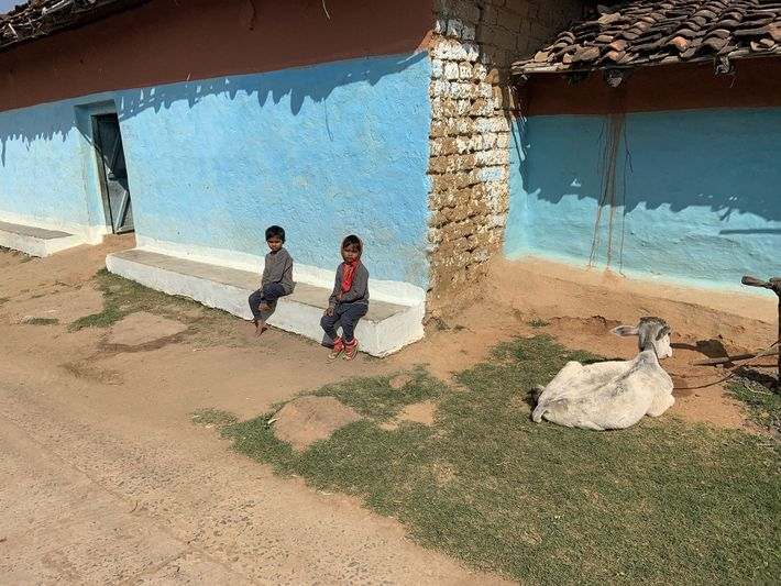 The homes of Madhya Pradesh's Gond tribe are traditionally blue and white with sloping, red-tiled roofs.