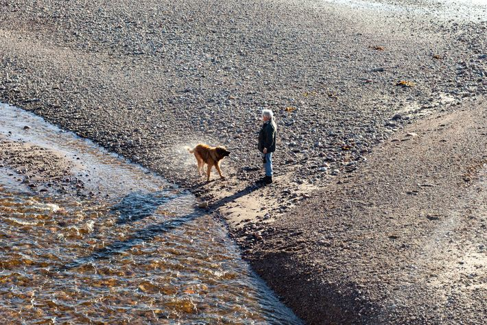 Simon Bajada's favourite photograph: a local man walking his dog at the river's mouth.