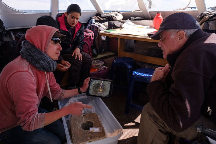 Onboard a research vessel on Lake Titicaca, project director Christophe Delaere and other team members share ...