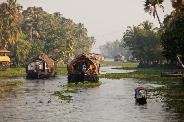 Kettuvallam houseboats and fishing crafts navigate the backwaters near Alappuzha.