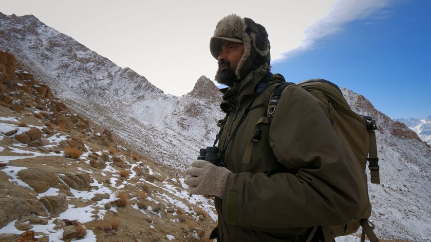 On the trail of the snow leopard in Ladakh.