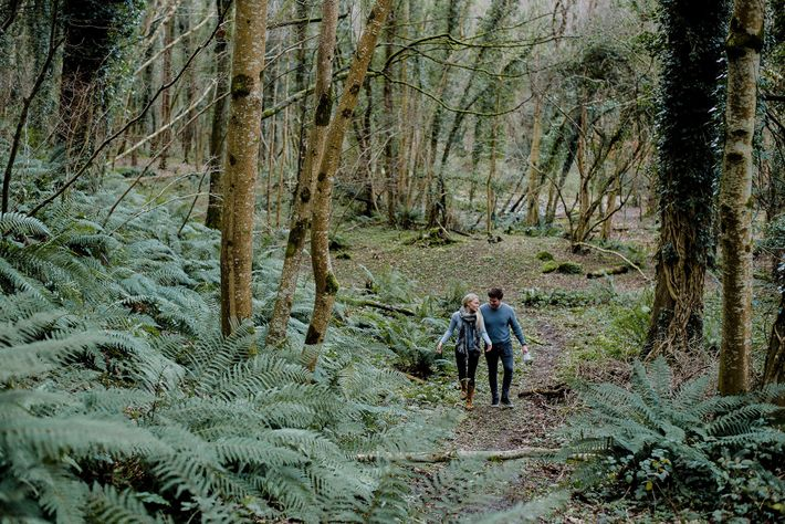 Jordan Bailey and Majken Bech-Bailey, co-owners of Aimsir restaurant, foraging in a wood in Enniskerry.