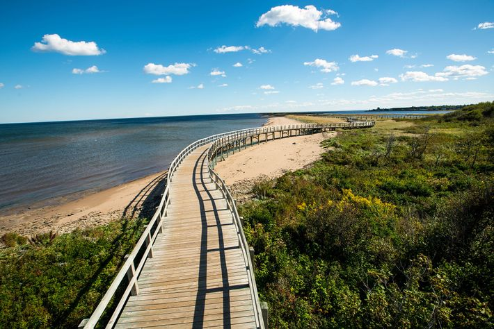 A boardwalk stretches across the Irving Eco-Centre: la Dune de Bouctouche, a seven-and-a-half-mile sand dune located ...