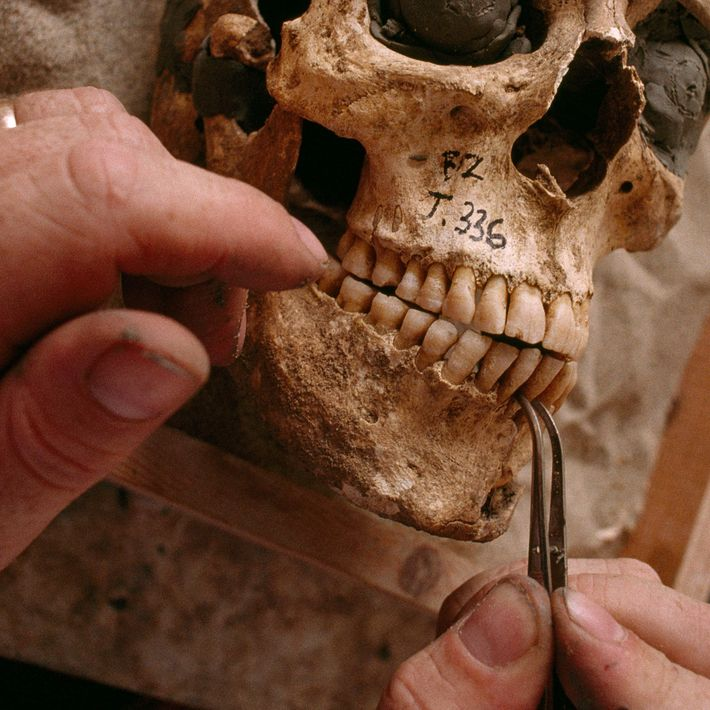 Carbon dating isn't a silver bullet for dating – but it can help archaeologists unpick the ...
