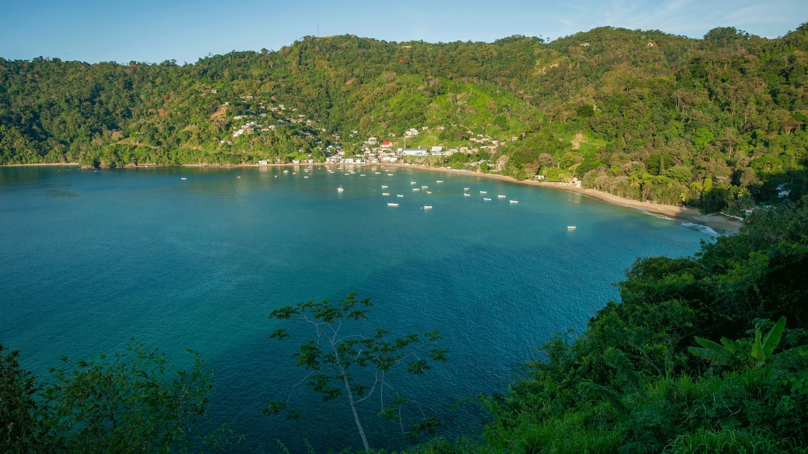 The Tobago Main Ridge Forest Reserve is the oldest tropical rainforest reserve in the Western Hemisphere.