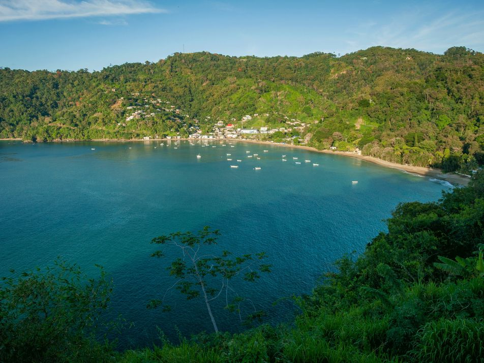 Wildlife expert Newton George on Tobago's pristine ecosystem and top forest trails