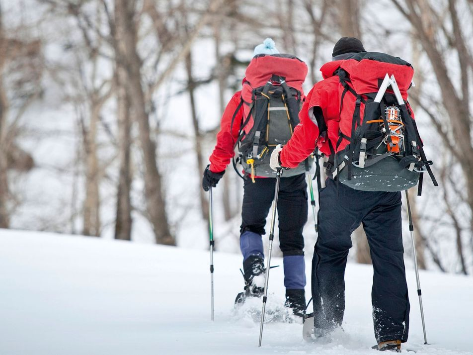 Call of the wild: classic winter adventures in Japan's rugged north