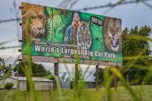 Oklahoma's Greater Wynnewood Exotic Animal Park, formerly owned by Joe Exotic, has reopened to visitors and ...