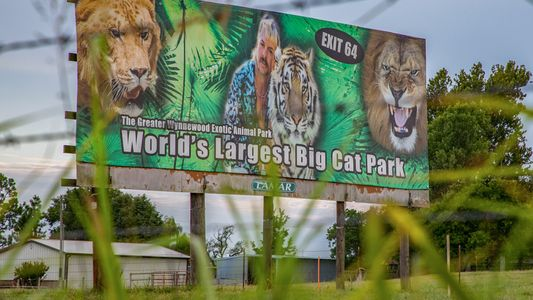'Tiger King' zoo reopens to big crowds, threatening big cats with coronavirus